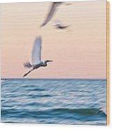Herons Flying Over The Sea  Wood Print