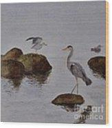Herons On Water Wood Print