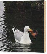 Herring Gull With Crab Wood Print