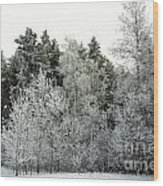 Hersey Lake Under Snow Wood Print