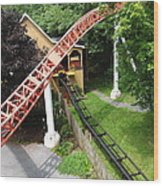 Hershey Park - Storm Runner Roller Coaster - 12121 Wood Print by DC Photographer