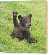Hi Five Bear Wood Print