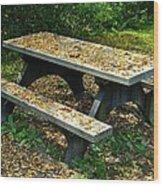 Hibernation Wood Print