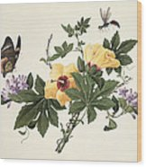 Hibiscus And Butterfly Wood Print
