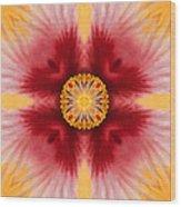 Hibiscus Close-up--kaleidoscope Wood Print