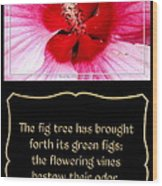 Hibiscus Closeup With Bible Quote From Song Of Songs Wood Print