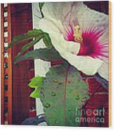 Hibiscus Flower In Bloom Wood Print
