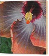 Hibiscus Key Largo Wood Print