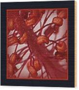 Hibiscus Macro Wood Print