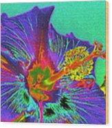 Hibiscus Power Wood Print by Rebecca Flaig