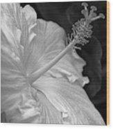 Hibiscus Profile Wood Print