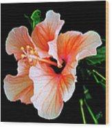 Hibiscus Spectacular Wood Print