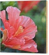 Hibiscus Summer Wood Print