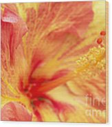 Hibiscus Wood Print by Tony Cordoza