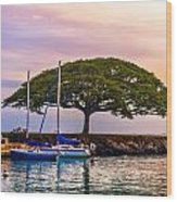 Hickam Harbor View Wood Print by Lisa Cortez
