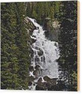Hidden Falls Jenny Lake Wood Print