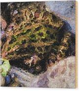 Hidden In The Rocks Wood Print