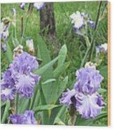 Hidden Iris Wood Print