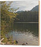 Hidden Lake No. 1 Wood Print
