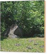 Hidden Rock Wood Print