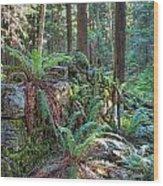 Hidden Rock Wall Wood Print