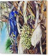 Hide-n-seek Hyacinths Wood Print