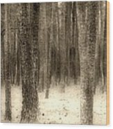 Hiding In The Trees By Diana Sainz Wood Print