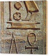 Hieroglyphics At Amada Wood Print