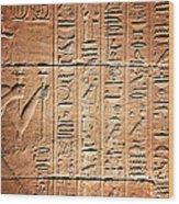 Hieroglyphs In The Temple Of Kalabsha  Wood Print