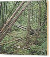 Higgins Lake Wood Print