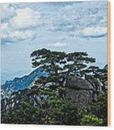 High Above Wood Print