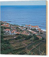 High Angle View Of Houses At A Coast Wood Print