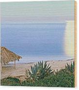High Angle View Of Windansea Beach, La Wood Print