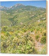 High Desert Greens Wood Print