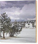 High Desert Snow Wood Print