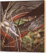 High Desert Tree Wood Print