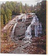 High Falls Wood Print