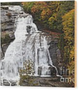 High Falls In The Dupont State Forest Wood Print