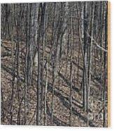 High Ground Wood Print