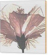 High Key Hibiscus Wood Print