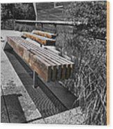 High Line Benches Black And White Wood Print