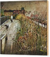 High Line Park In The Rain New York Wood Print