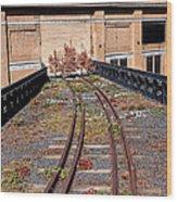 High Line Spur Wood Print
