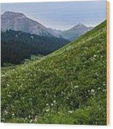 High Meadow  Wood Print