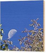 High Moon Wood Print