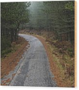 High Mountain Road Wood Print