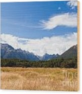 High Peaks Of Eglinton Valley In Fjordland Np Nz Wood Print
