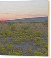 High Plains Desert Landscape Wood Print