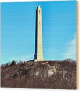 High Point Monument Nj Wood Print