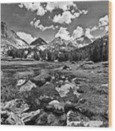 High Sierra Meadow Wood Print